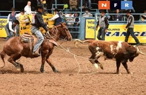 2018 Wrangler NFR: Team Roping Prediction & Analysis